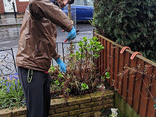 Rain Rain go away, we've got a garden to tidy today.