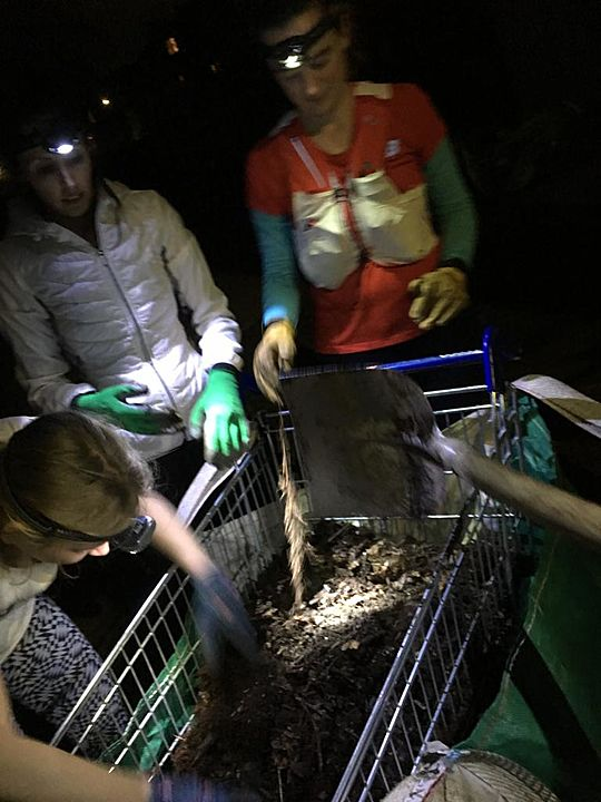 GoodGym X Earth Hour - We Really Sieve A Muck