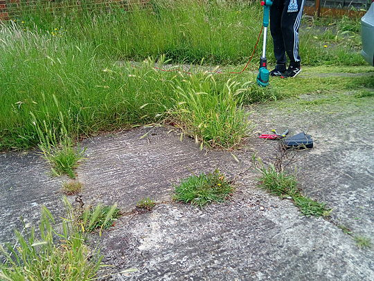Strimmer to the rescue
