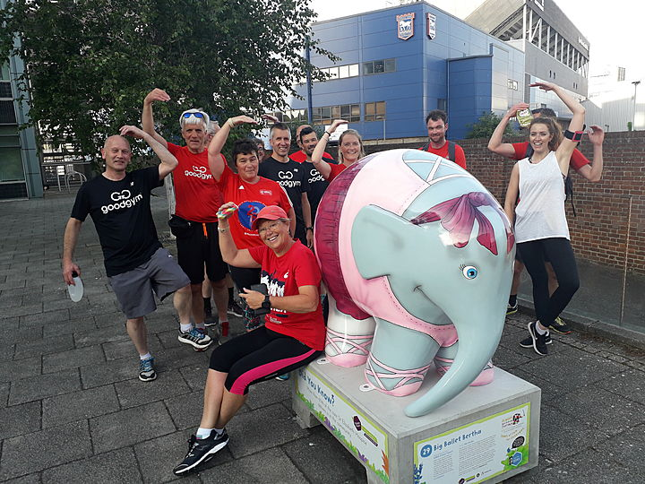 Elephantastic - Goodgym Gets Trunky  With Elmer