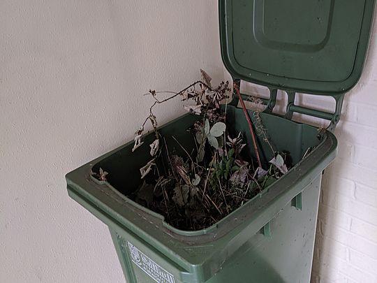 Brum's Pioneers Kick De Bucket (wheelie bin)