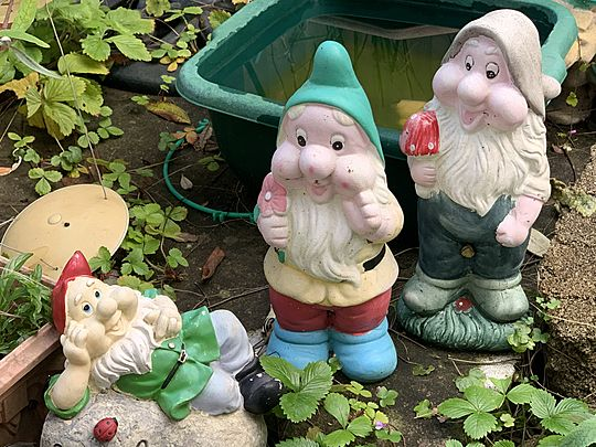 Gnome Mean Feat
