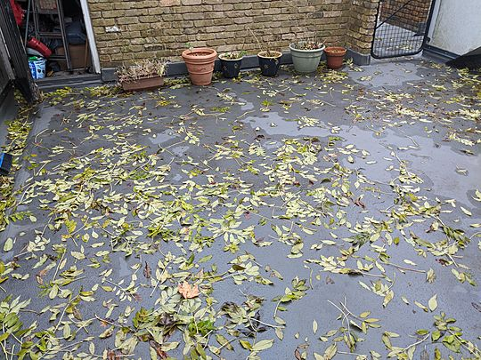 Leaf-ing Mrs E's patio swept clean