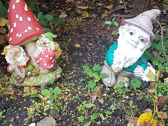 Tidying the gnome's home