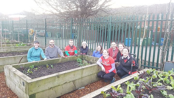 How mulch wood could a Goodgym chuck if a Goodgym could chuck wood