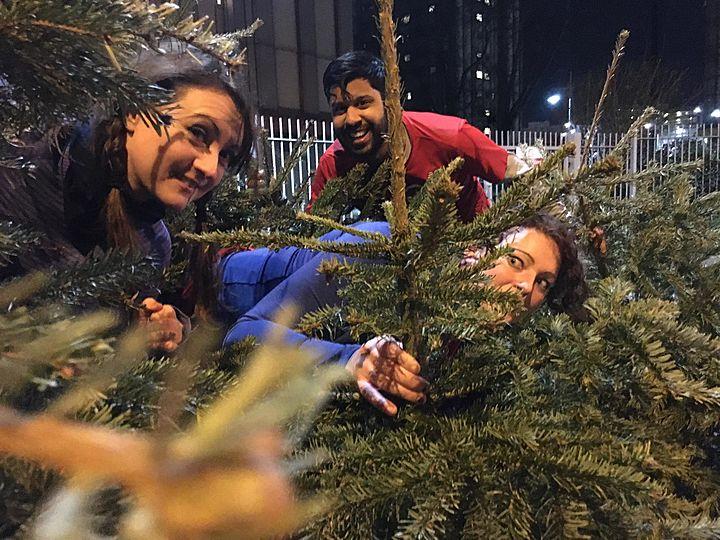 Januar-Tree Challenge!