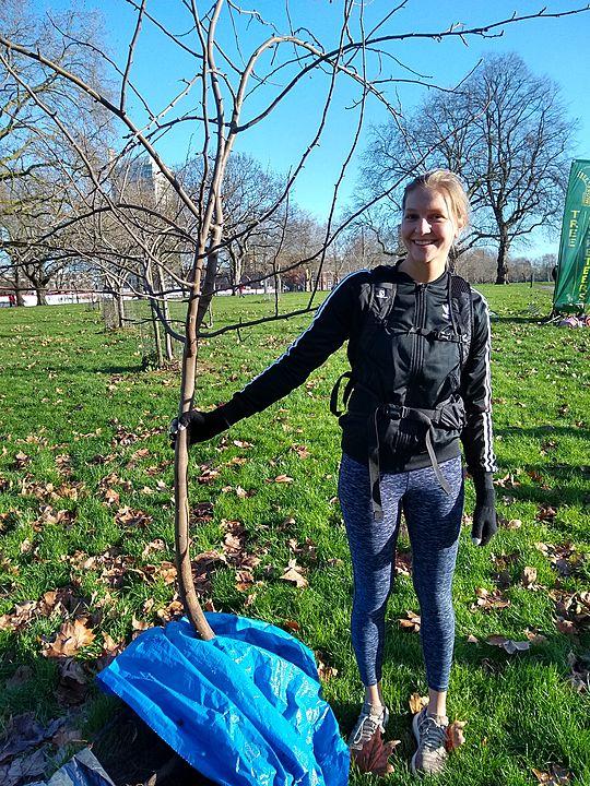 Getting the lowDowns on tree-planting