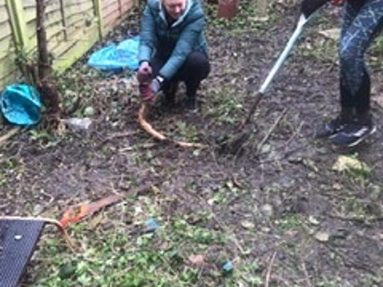 Storming through the garden