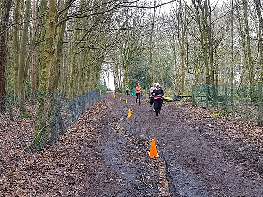 A Branch Line to Parkrun