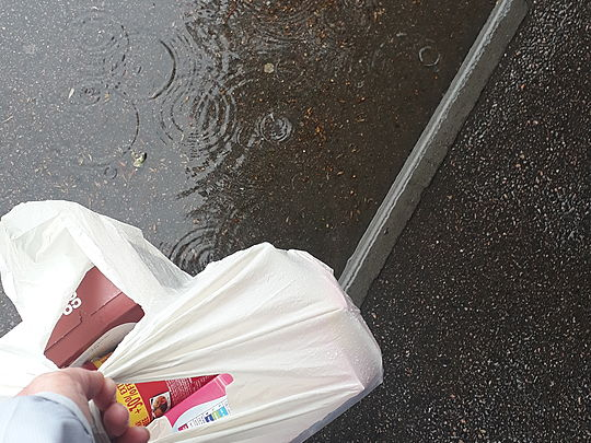 Soggy But Successful Shopping