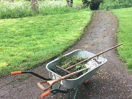 Volunteering at community gardens