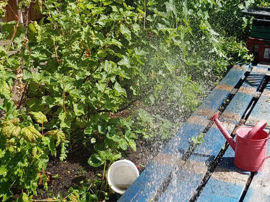 Water load of fun!
