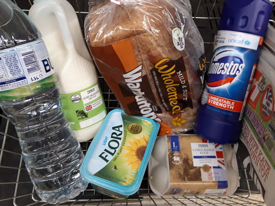 Groceries for Mr S
