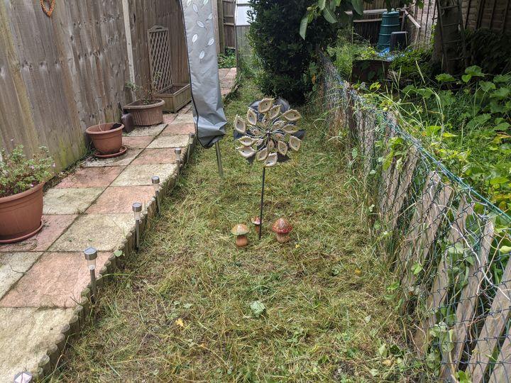Garden the Interruption