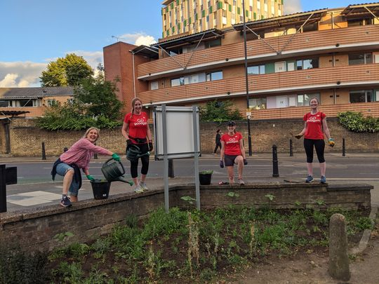 Did we unearth some Guerrilla gardening?