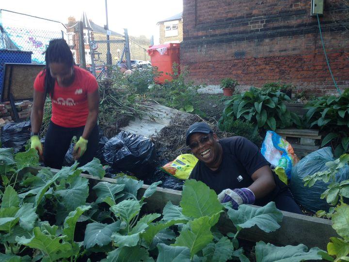 Prepare the Crofton Park Community Garden for opening!