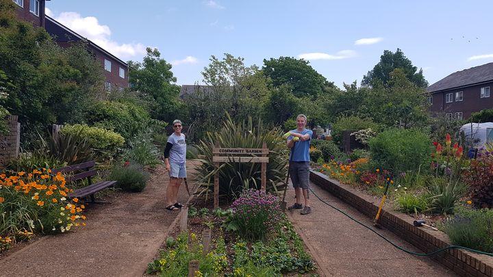 Bulb Planting at Ingram Crescent Estate
