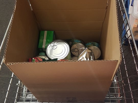 Shopping food bank style