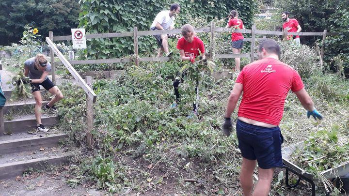 Garden maintenance in a community garden at St. Werburgh's City Farm