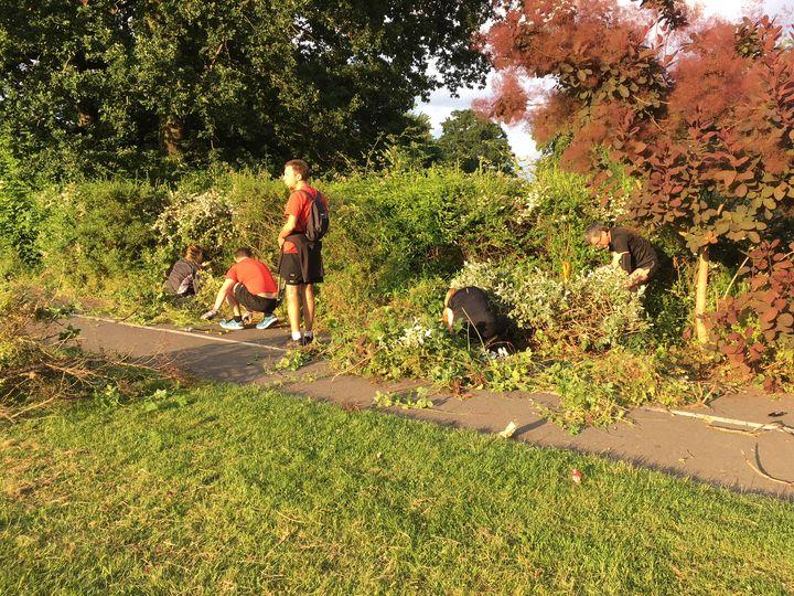 Gardening at Cator Park