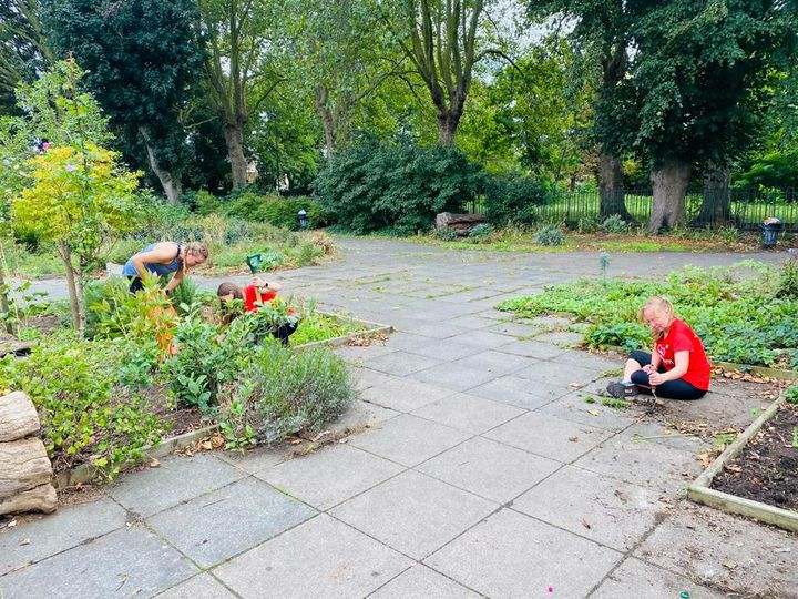 Planting bulbs at the community garden