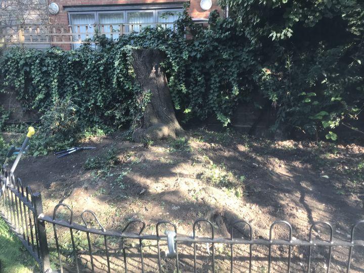 Kennington Park Gardening