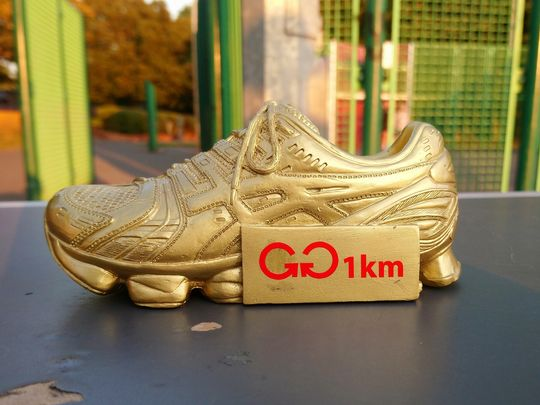 The third Golden Trainer