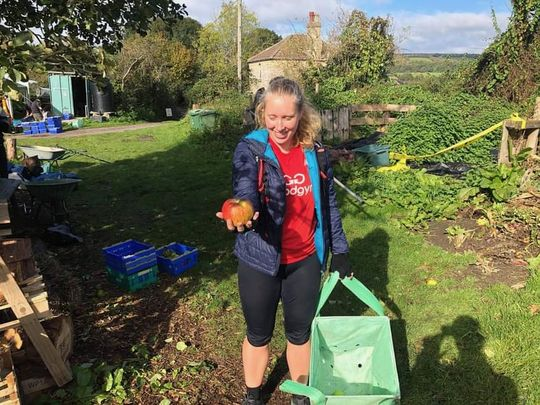 Apple picking and making cider at Dry Arch