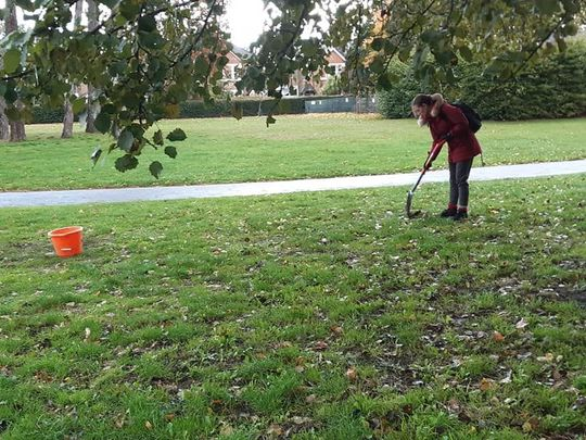 Planting bulbs and shrubs at Cator Park