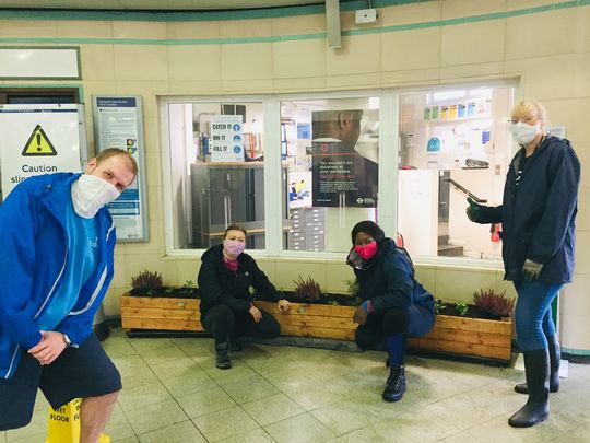 Hardworking Horticultural Hoopla at Hainault