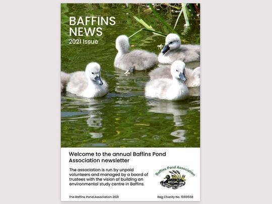 Baffins Issue