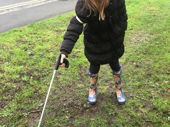 Litter pick & Walk