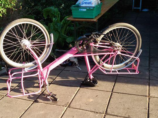 Cargo Bike TLC