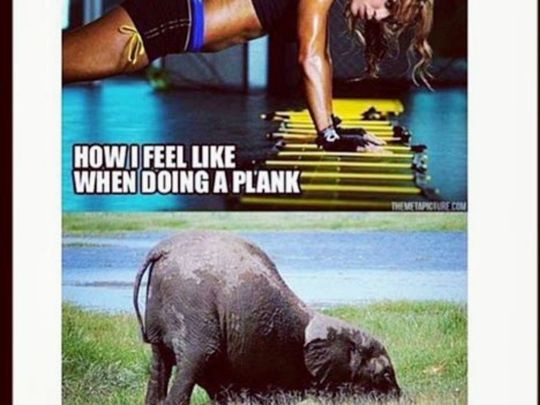 A PLANK A DAY - LETS MAKE HAY WHILST THE SUN SHINES
