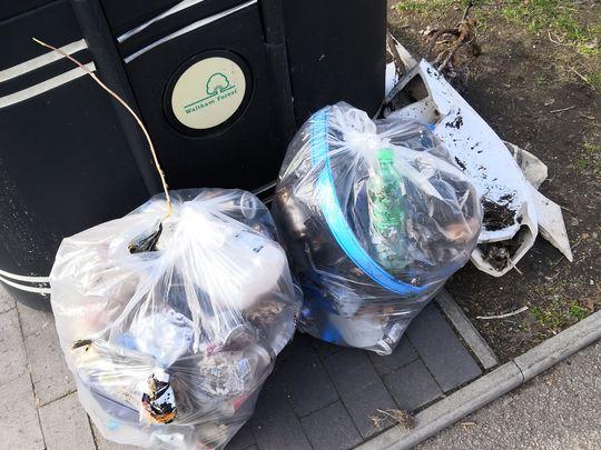 Litter pick at Walthamstow wetlands