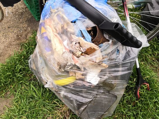 Litter pick at Epping Forest