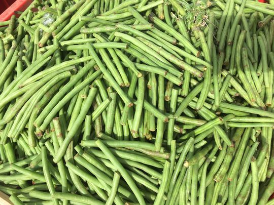 City Harvest: Bean There, Done That