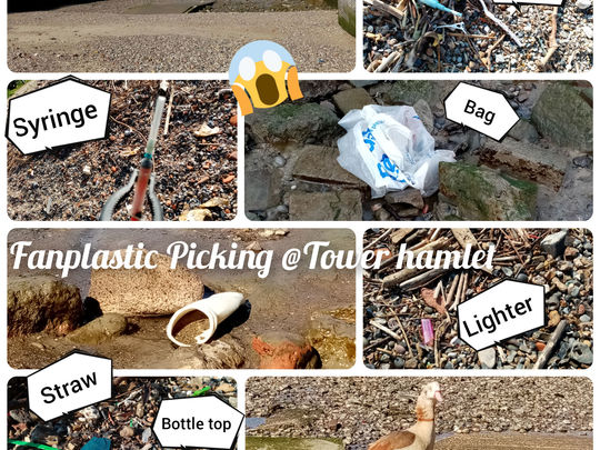 Fanplastic Picking: rubbish washed up on our Thames Riverside