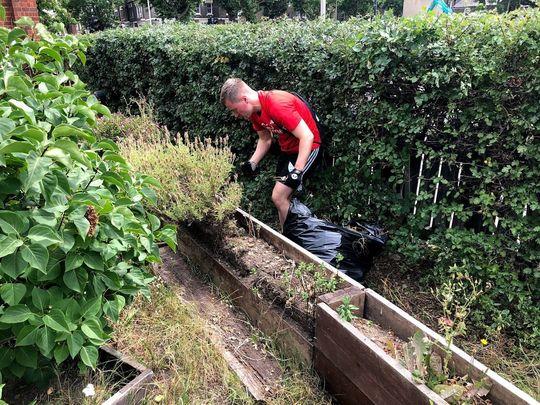 Help prepare this new community garden