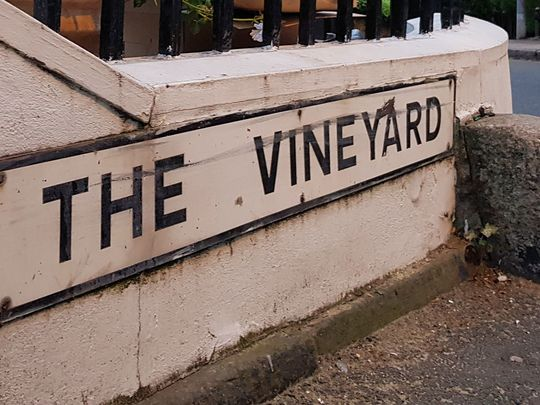 Went to the vineyard to do good and wine not!!