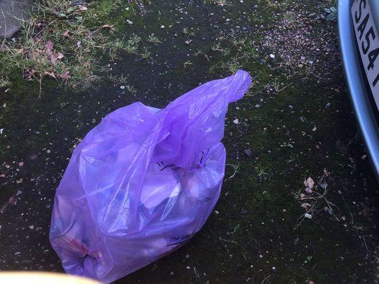 Litter Picking Around Holyport Village 4Jul21