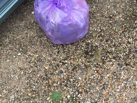 """Litter Picking A308 Windsor Road - Fifield Road to Holyport Road """"and Back Again""""..."""
