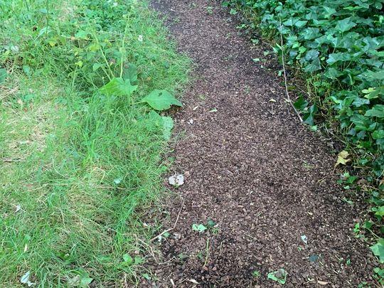 Paths Less Trodden