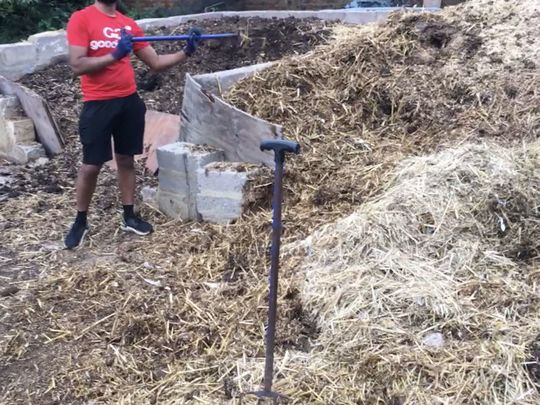 Roots Manure-vre
