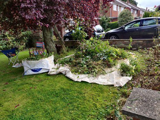 The Lost Garden of Maidenhead
