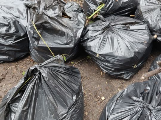 Edgeley Park plogging - a rubbish Tuesday!