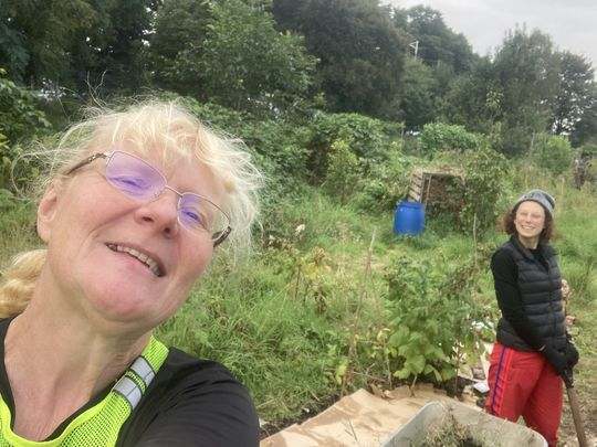 A Jolly Jay Came To Visit The Allotments