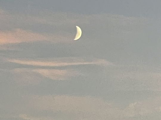 Reaching for dawn and the half moon!