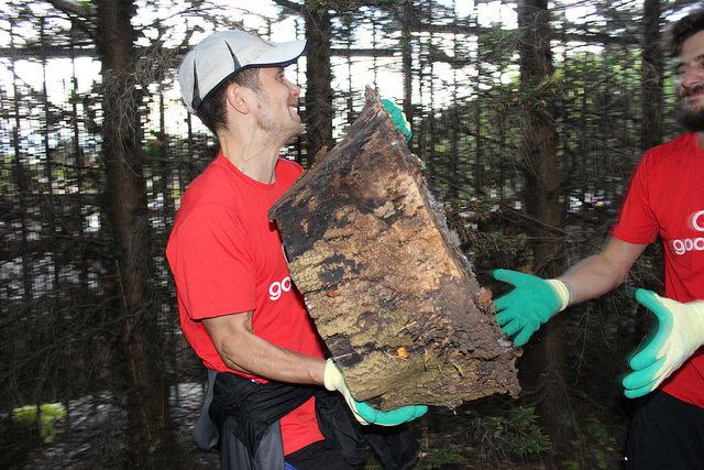 Logging Haringey's First Run
